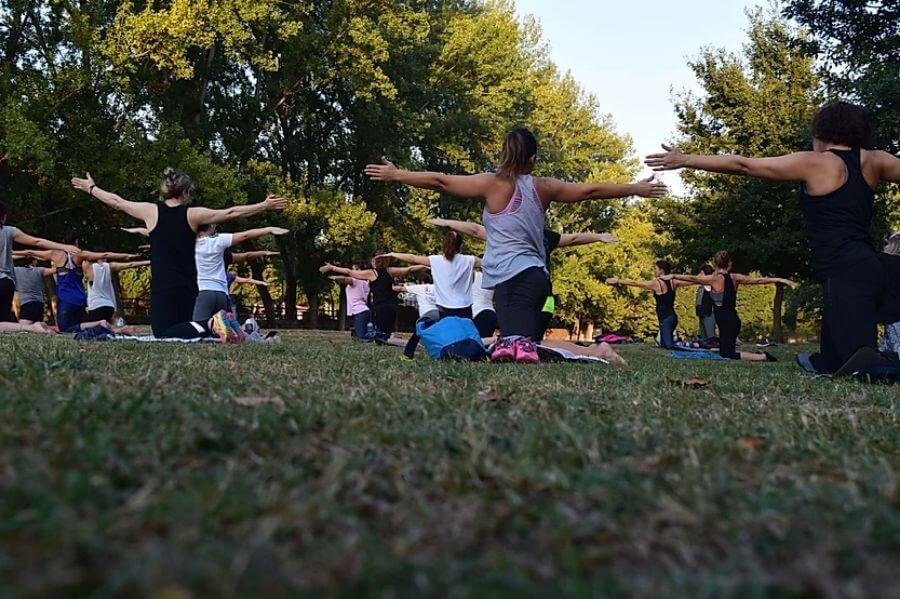 yoga Hormone Puzzle