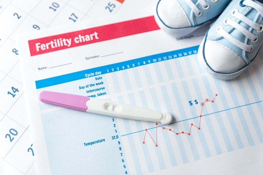Ovulation as Fertility Treatment Options Other Than IVF