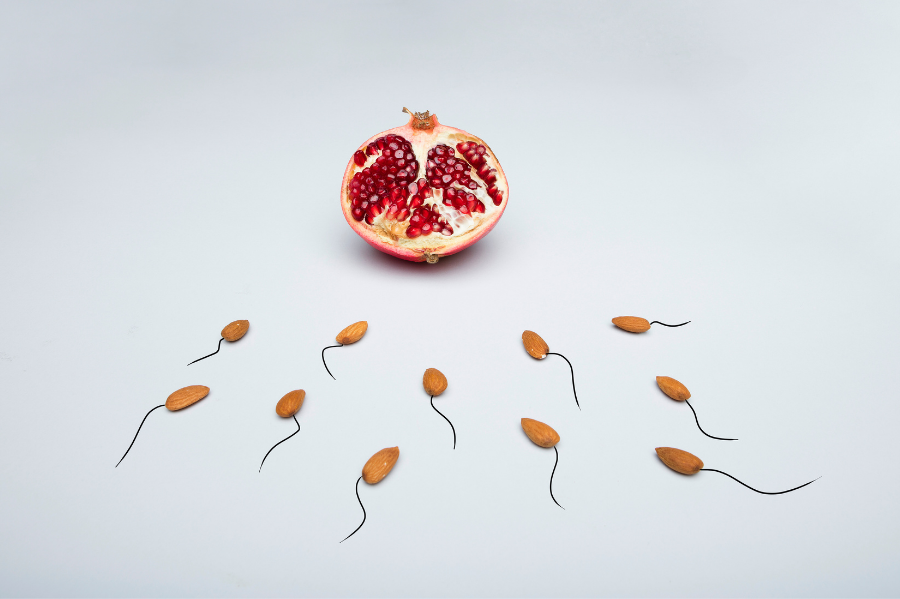 Male Fertility and the Importance of Fertility Testing (1)
